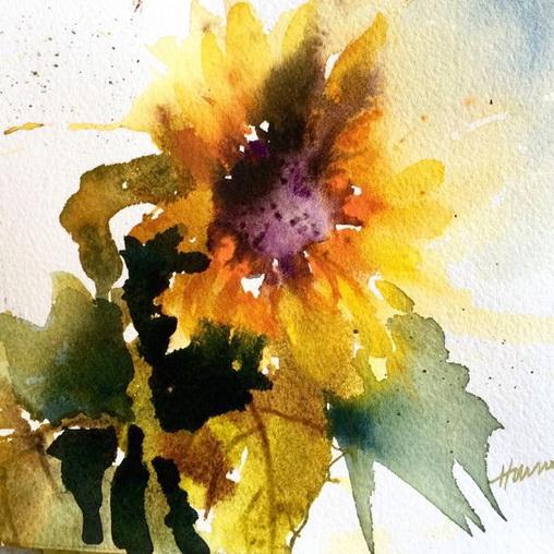 Pamela Harnois - Sunflower