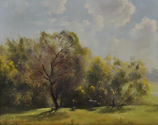 Albert Ernest Newbury - Budding Wattles