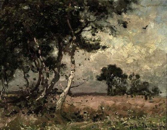 Julius Jacobus Van De Sande Bakhuyzen - Birches along a hay field