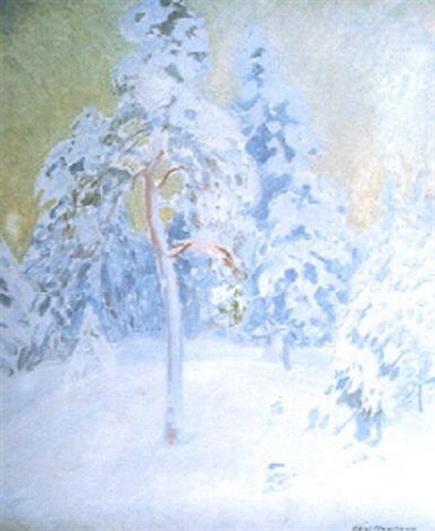 Vaino Hamalainen - Vinterdag