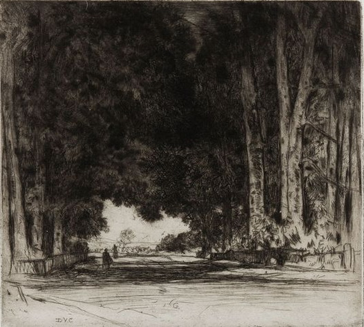 David Young Cameron - The Avenue, Etching