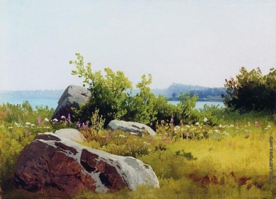 Мещерский - Летние травы