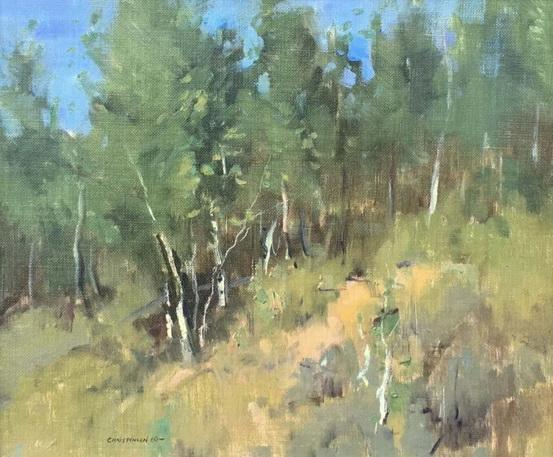 Scott Christensen - Sun Valley Aspen Study