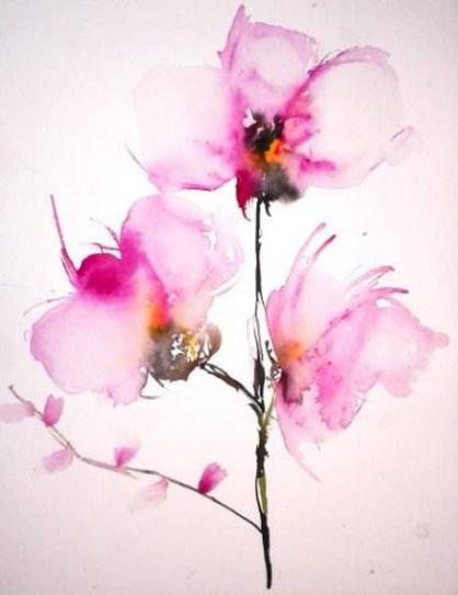 Karin Johannesson - Orchids IV