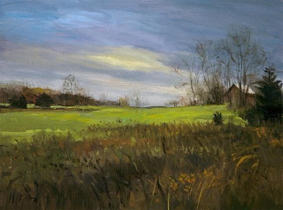 Peter Fiore - Field, November