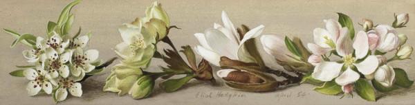 Eliot Hodgkin Tutt'Art@ (53)