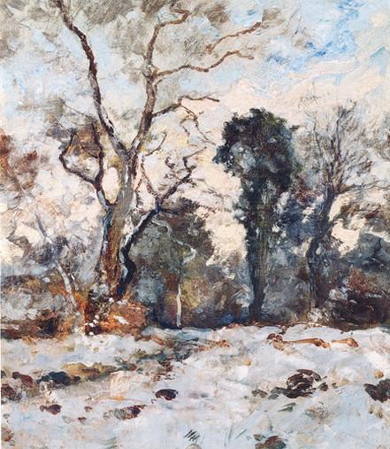 Guillaume Vogels - Les fougeres sous la neige