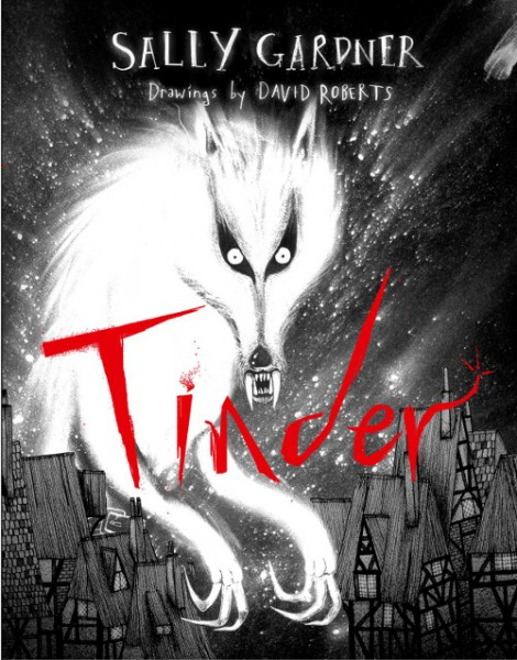 cover to tindersmall