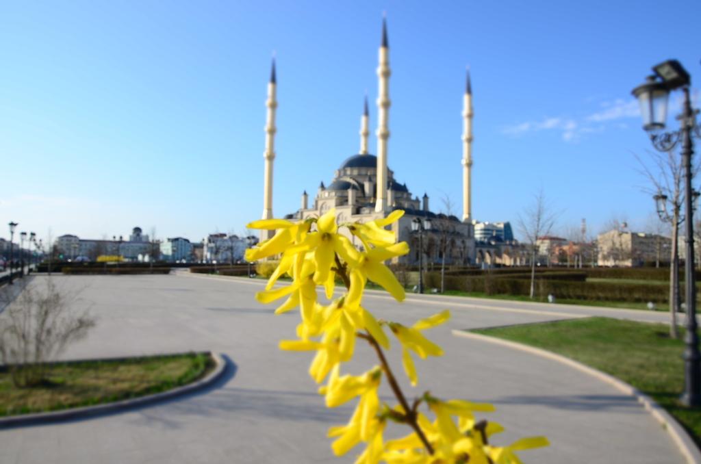 Грозный-Чечня (6)