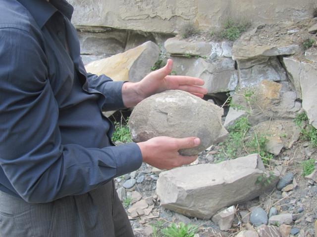 В Чечне обнаружили еще одну кладку яиц динозавров