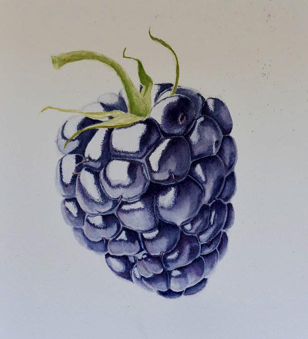 blackberry3