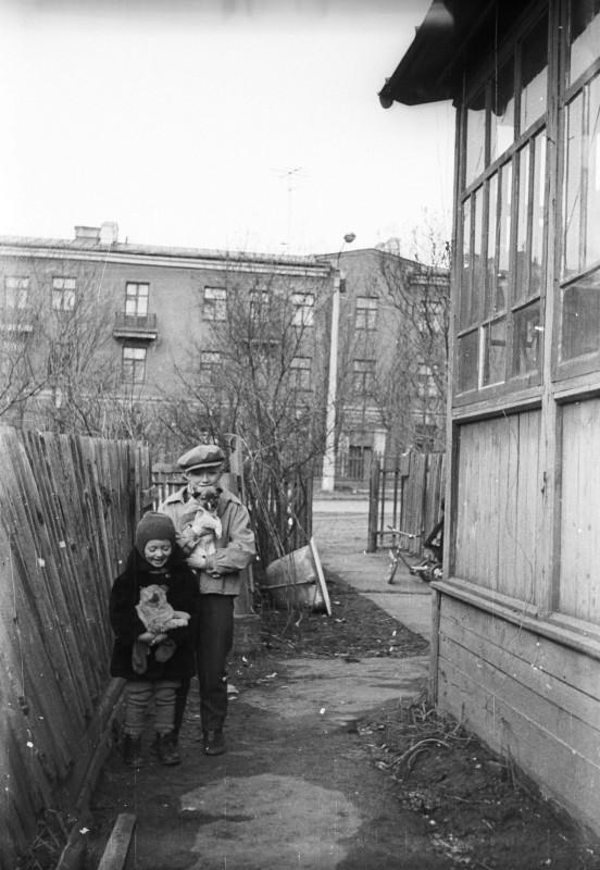 1969_IMG012_со_щенками.jpg