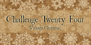 challenge twenty four banner.png