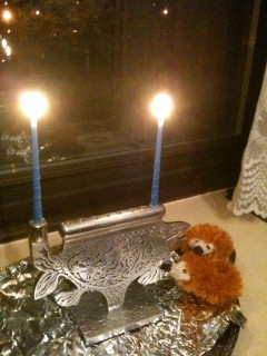 the hedgies' first chanukah