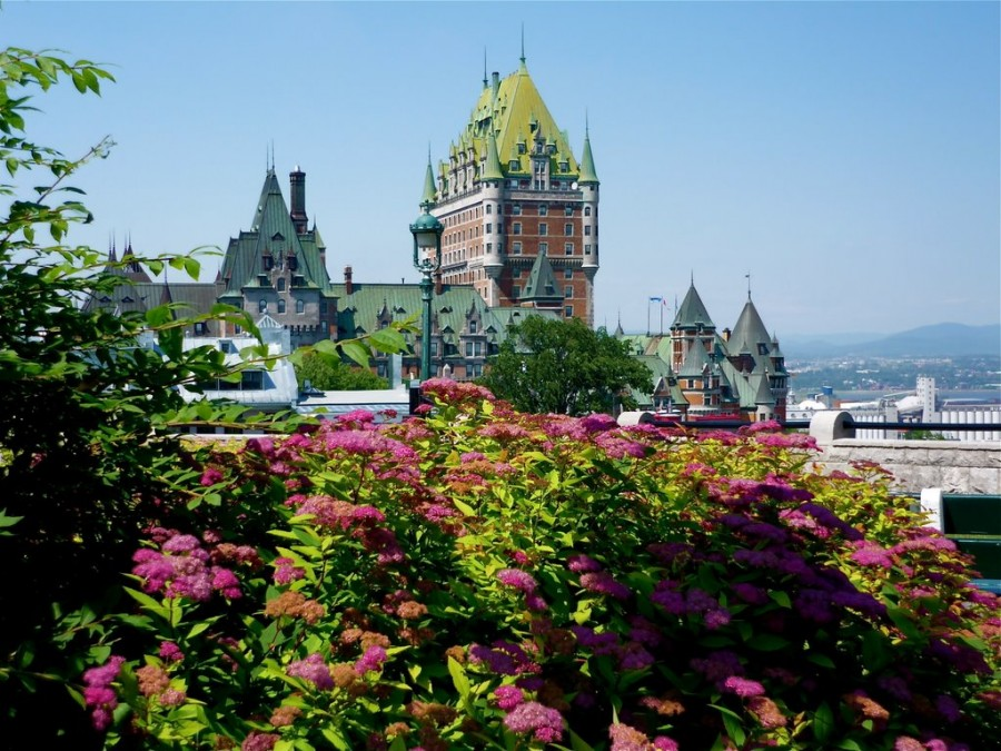 Quebec-City pink
