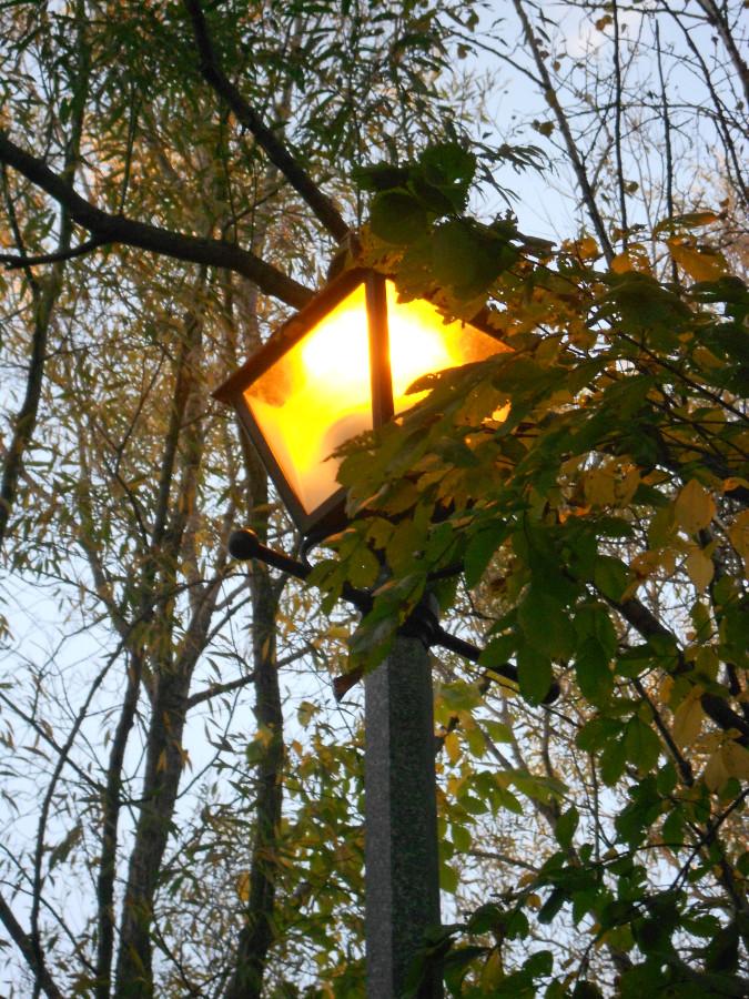 почти ночь, улица, фонарь...