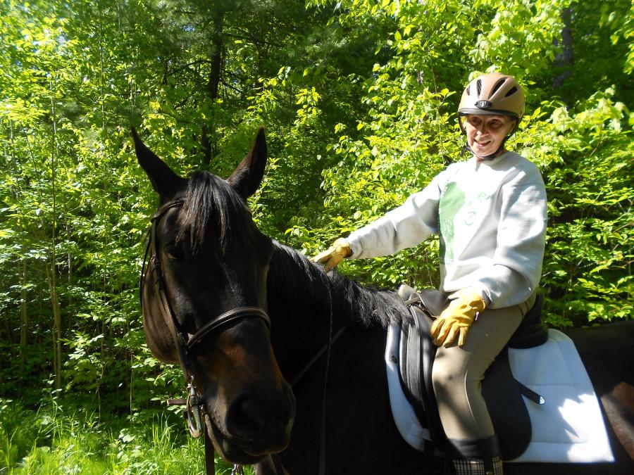 black horse2