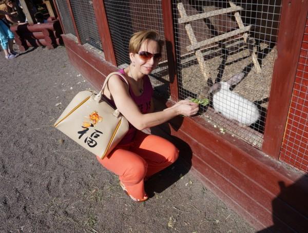 Кролики...