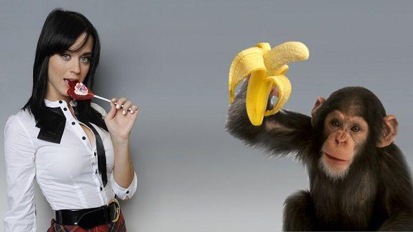 Про женщин, обезьян и бананы. Мой ответ психологам