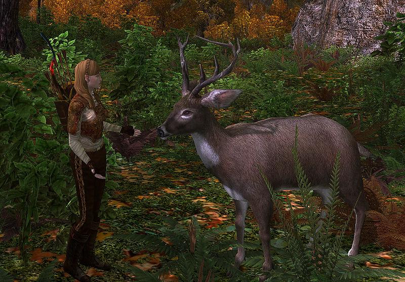Deer Pet