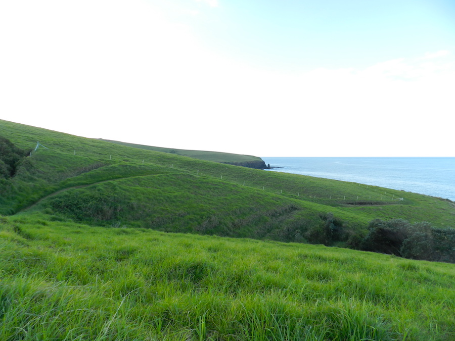 Kiama Coastal Walk 2.JPG