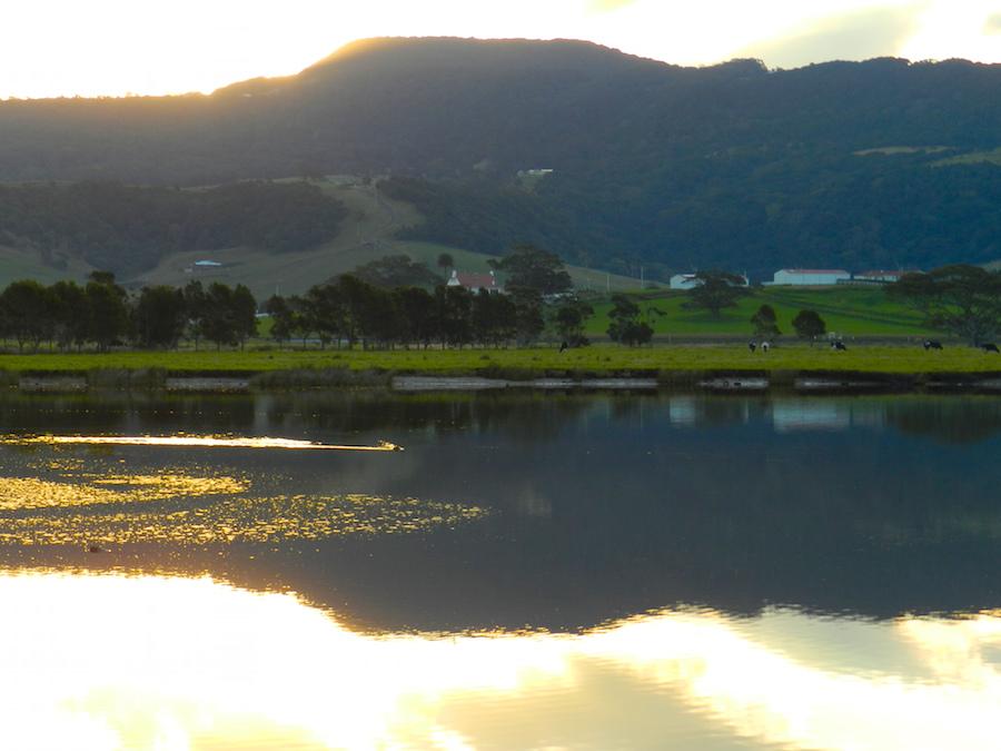 Sunset Werri Lagoon.JPG