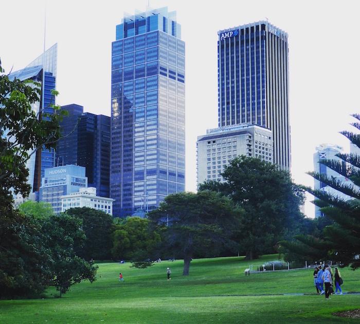 Ботанический Сад Сидней.jpg