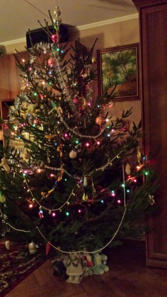 елка новый год 2015