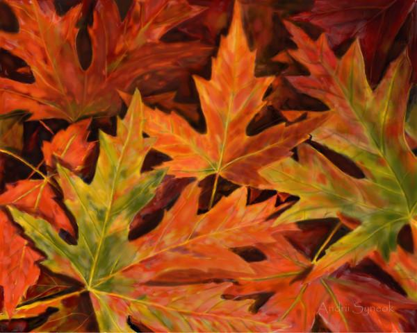 Кленовые листья _3 _crop _sign _res1800x1440