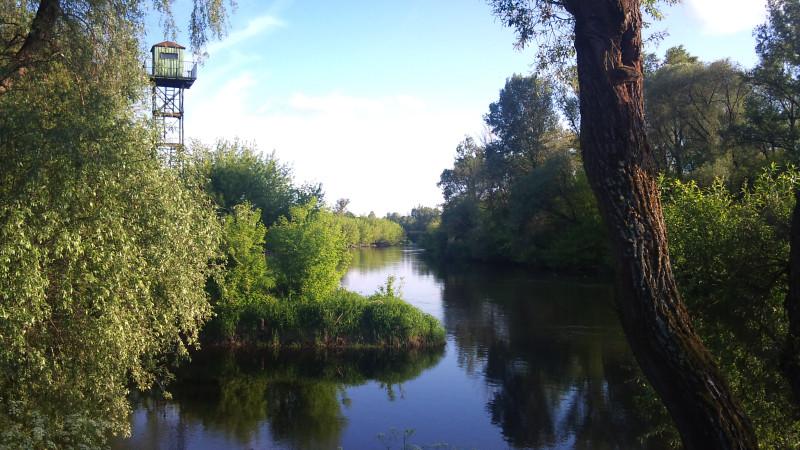 Место слияния Западного Буга и Мухавца в районе Тереспольских ворот. Тут видно, что их течения разных цветов.