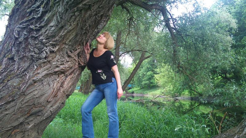Очень жаль, что вот такие могучие деревья не смогли устоять в неравной борьбе с бобрами