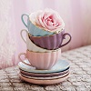 Belle-Teacups2.jpg