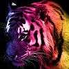rainbow_tiger_by_fire_nekoyasha-d37k1gu.png