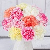 PRODUCT_FLOWERS_12_Classic_Carnations_image1.jpg