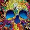 4123-colorful-skulls.jpg