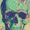 colorful-skull-trippy-Favim_com-432890.jpg