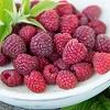 Raspberries05.jpg