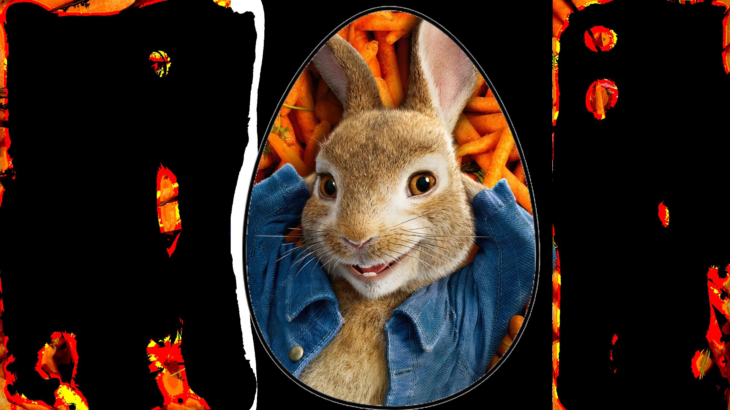 wallpapersdencom_peter-rabbit-2018-movie-poster_2560x1600 (1).png