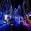 boston-christmas-lights.jpg