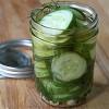 refrigerator dill pickles 1.JPG