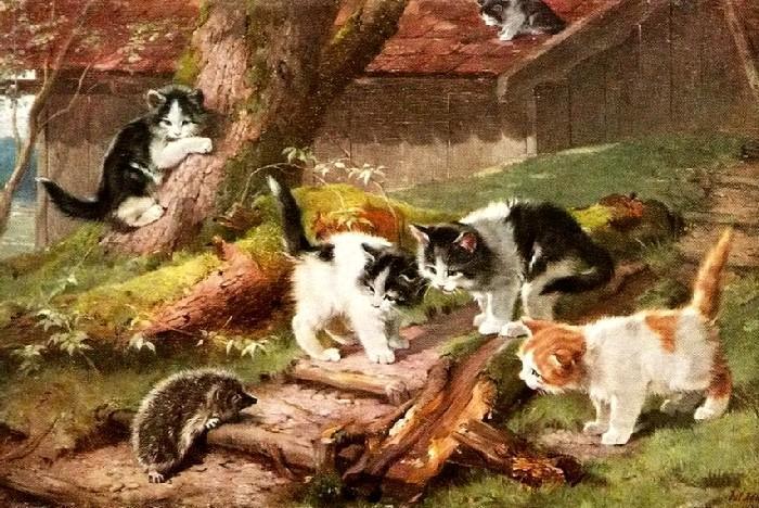 ёж и кошки