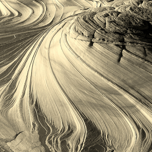 Snowdrifts Sculpted by Wind