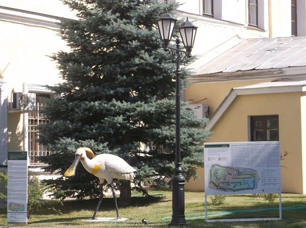 kazan_kreml2