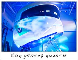 2014_91