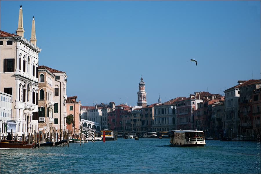 Гран-канал Венеции и его маршрутки... 7198