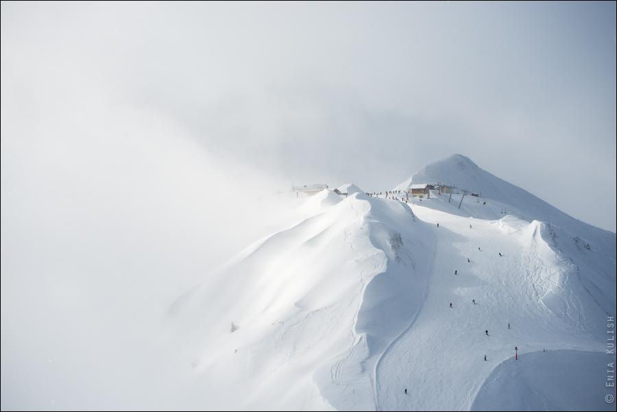 snow_plagne
