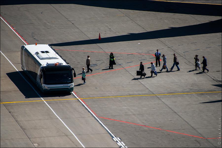 Аэропорт Домодедово: вид сверху... с вышки! 2686