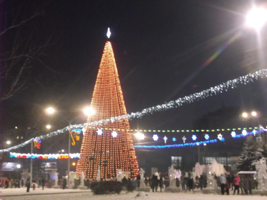 Барнаул, Площадь Сахорова, главная Ель.JPG