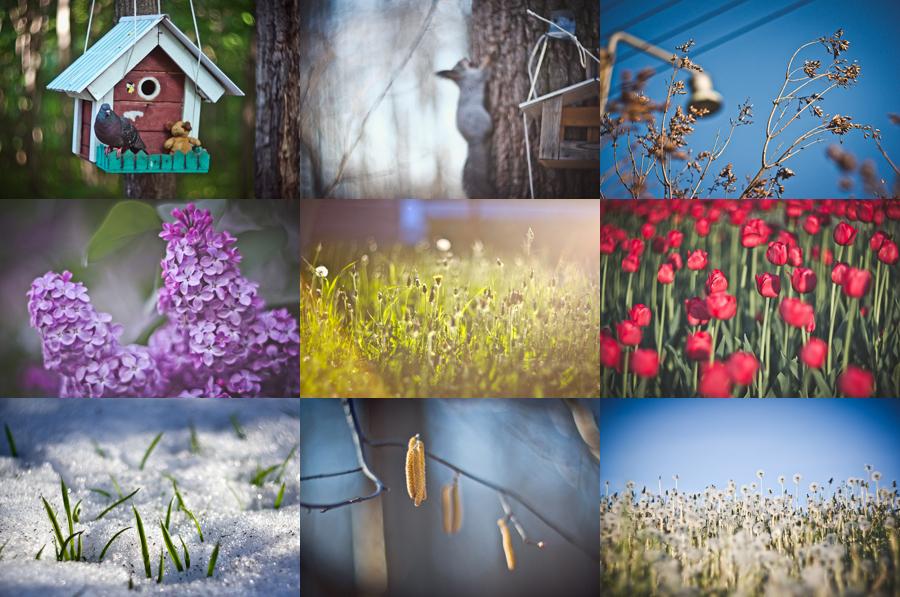 spring_summer_2014