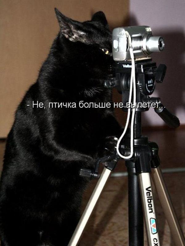 1238963144_24